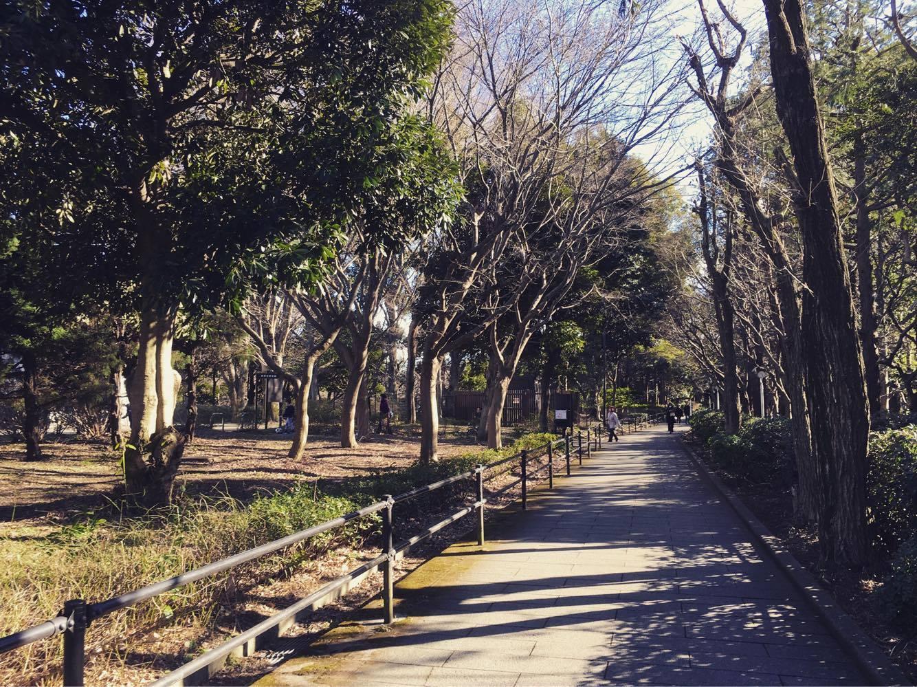 世田谷美術館のお隣は砧公園。子供づれでも楽しめます。