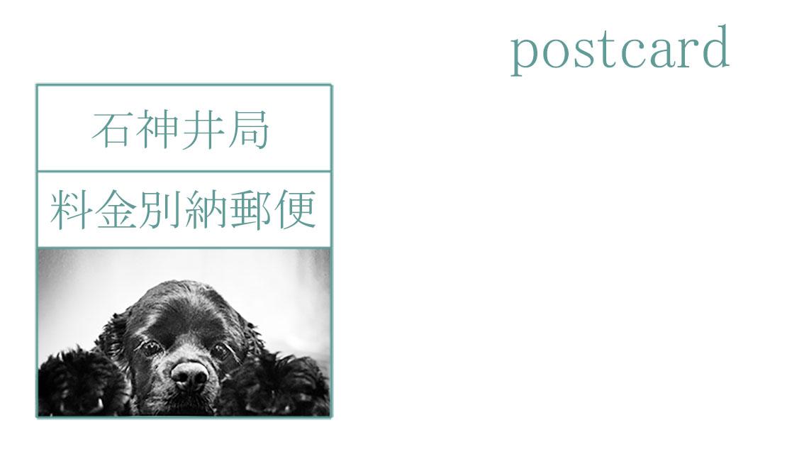 あ、ちなみに宛名面の切手部分は我が愛犬のノンちゃん。戌年ということで出演していただきました〜